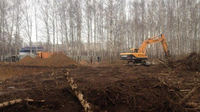 Вырубка деревьев при строительстве